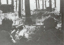 Polish paratroopers in positions on the southern bank of Rhine (Arnhem).